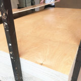 placa UV da mobília do carburador E0 da madeira compensada do vidoeiro branco do núcleo do Poplar 4*8 de 9/12/15/18mm para o gabinete