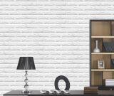 Papier décoratif étanche à l'humidité de panneau de mur 3D