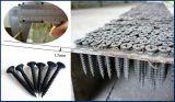 Parafusos do Drywall/parafusos Drywall da gipsita/parafusos do preço de fábrica