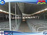 Edificio prefabricado de las aves de corral para el pollo/el cerdo/el ganado/la casa del caballo (FLM-F-018)