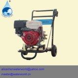 Máquina de la limpieza del carbón del motor de coche del control de gas