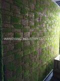 실내 인공적인 황녹색 벽돌 벽