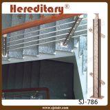 Trilhos de vidro de alumínio com o corrimão da madeira contínua para a escadaria (SJ-798)