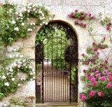 Puertas de jardín de lujo europeas del hierro labrado