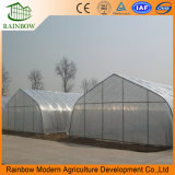 Сельскохозяйственная Туннельная Овощная PE Polytunnel Теплица для Продажи