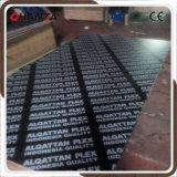 1250X2500mm película contrachapada para el mercado de Europa
