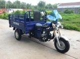 150cc Mtr 화물 세발자전거 또는 3개의 바퀴 기관자전차 (TR-7)