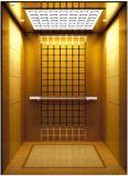 يقود [فّفف] [جرمن] محترفة إلى البيت دار مصعد ([رلس-221])