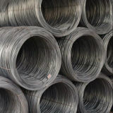 鋼鉄Wire Rod 5.5mm 6.5mm 8mm 10mm