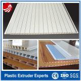 Linha de produção de placa de fivela de PVC de alto desempenho para venda de fabricação