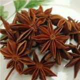 Illicium Verum, звездчатый анис осенью и весной посевов сельскохозяйственных культур