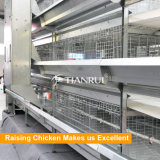 Cage de poulet galvanisée plongée chaude à plusieurs niveaux pour la poulette