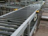 Linha 2 do transporte de rolo para o conjunto de Prodution
