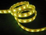 striscia di alto potere LED di 12W SMD3528