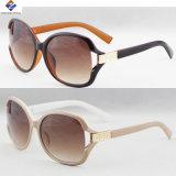 sunglasses 플라스틱과 최고 새로운 좋은 품질 숙녀