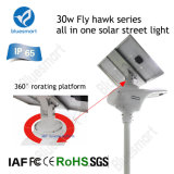 30W 40W太陽LEDの屋外の動きセンサーの街灯の庭ライト