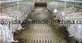 El panel que introduce galvanizado caliente del cerdo