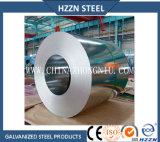 0.50mm Spangle regular da bobina de aço galvanizado