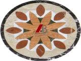 De natuurlijke Marmeren Tegels en Partterns van het Mozaïek
