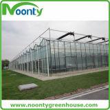 Envergure simple de bâti de serre chaude en verre en aluminium de tunnel avec la ventilation automatique