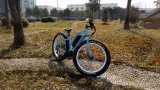 26 بوصة [250و] إدارة وحدة دفع منتصفة دراجة كهربائيّة مع يتقدّم كهربائيّة دراجة تكنولوجيا