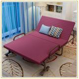 접히는 침대, 간단한 침대, 강철 프레임 침대, 병상
