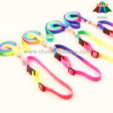 Poliestere di alta qualità del Rainbow 15mm di Caldo-Vendita/guinzaglio di nylon & collare & cablaggio registrabili