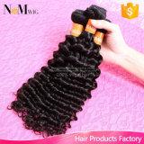 Ferro brasileiro do cabelo da forma do cabelo do Weave profundo não processado de 100%