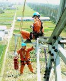 Guter Metalloxid-Stromstoss-Überspannungsableiter der Qualitäts12kv polymerischer
