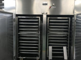 Four de séchage circulant en acier inoxydable CT-C-II en acier inoxydable