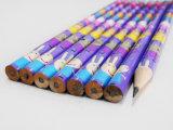 収縮の鉛筆のHbの鉛筆の消す物学生の鉛筆が付いている円形の鉛筆の鉛筆