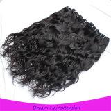 100% Kambodschaner-Jungfrau Remy Haar-natürliche Wellen-natürliches Haar