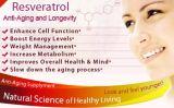 Extracto de pele de uva 5% Resveratrol para Nutraceutical e Suplemento Alimentar