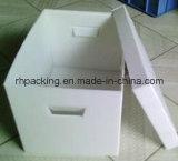 Le découpage meurent l'impression de boîte en plastique de pp/l'imperméabilisation/Environmently/qualité/facile à prendre