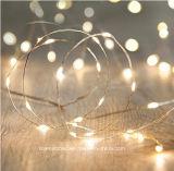 De Lichten van Kerstmis van het LEIDENE Koord van de Fee met Witte LEDs op de Draad van het Koper