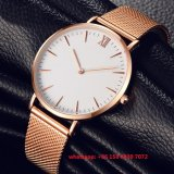Het knappe Eenvoudige Horloge van de Legering van het Kwarts voor Mensen Fs480