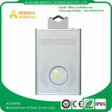 LiFePO4電池の太陽1つの壁ライトの12W通りすべて