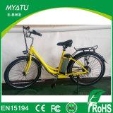 250W En15194를 가진 전기 바닷가 함 자전거