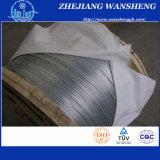 최신 판매 높은 탄소 아연 입히는 철강선 BS ASTM DIN