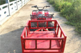 Quads ATV, veículos de praia, motor elétrico