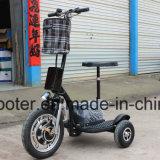 der Naben-350W Roller-Zappy Ingwer Roadpet Bewegungselektrischer des Motorrad-3 des Rad-E