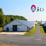 Structrueの鋼鉄家禽はニワトリ小屋を収容する