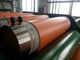 Rollo de PVC, PVC Mat, suelos de PVC