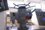 Elektrische Actuator van de Reis van de Kwartdraai van Ckdj