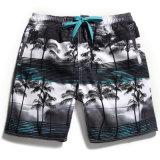 Uomini di nuotata di sport di acqua di stampa dell'albero di noce di cocco dei pantaloni della spiaggia con il rivestimento e la casella della maglia