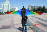 Grande colore di nylon dei cervi volanti due dell'uccello da Weifang