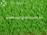 庭または景色(SUNQ-HY00164)のための40mmの合成物質の泥炭