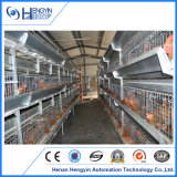 Animal Livestock Poultry Cage Equipment for Day Old Chicken Bird