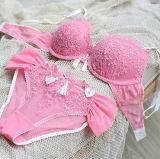 2016 Nuevo sujetador y panty de la ropa interior de las señoras del algodón del diseño (FPY333)