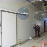 Professionelle Stahlkonstruktion-Chemikalien-Kaltlagerung mit PU-Zwischenlage-Panel
